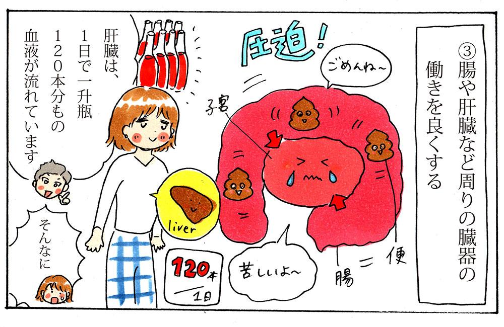 肝臓・腸の機能低下