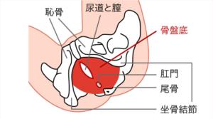 産後 腰痛