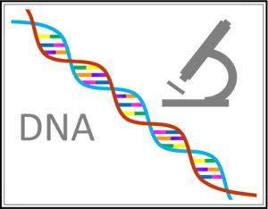 DNA検査であなたの体質を調べます。