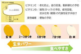離乳食 おかゆ 種類