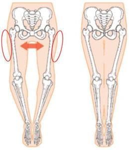 脚の太さは骨盤にある