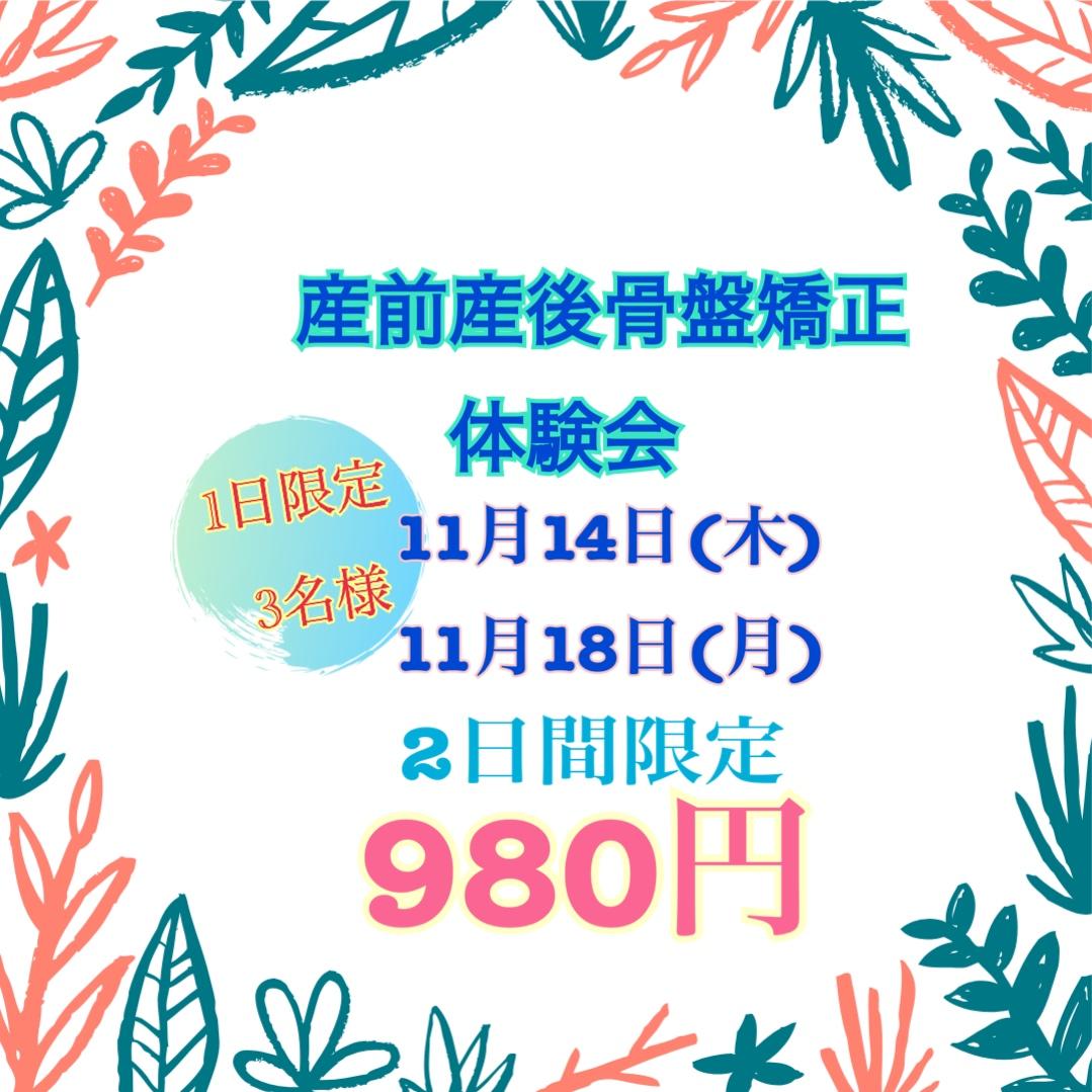11月体験会キャンペーン