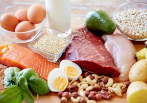 タンパク質イメージ